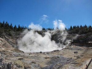 I went to Rotorua and all I got was this giant cloud of steam.